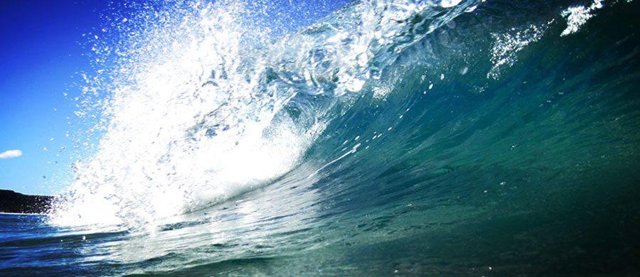 Surfbegriffe---web