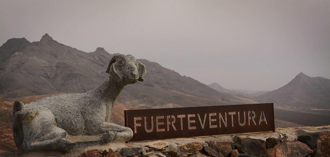 Wusstest du, dass… – 10 Fakten über Fuerteventura