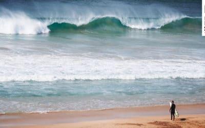Safety Rules fürs Surfen