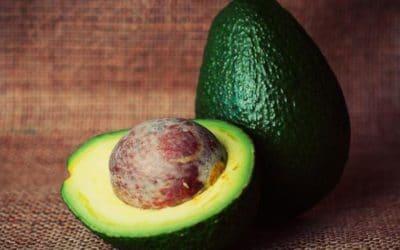 Avocado – die Wunderfrucht
